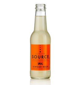 Llanllyr Source Ginger Beer (4pk)