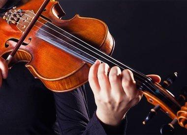 Strings Accessories