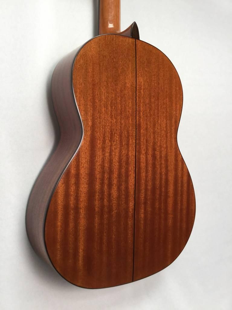 Cordoba Cordoba C5 Dolce Nylon String Guitar