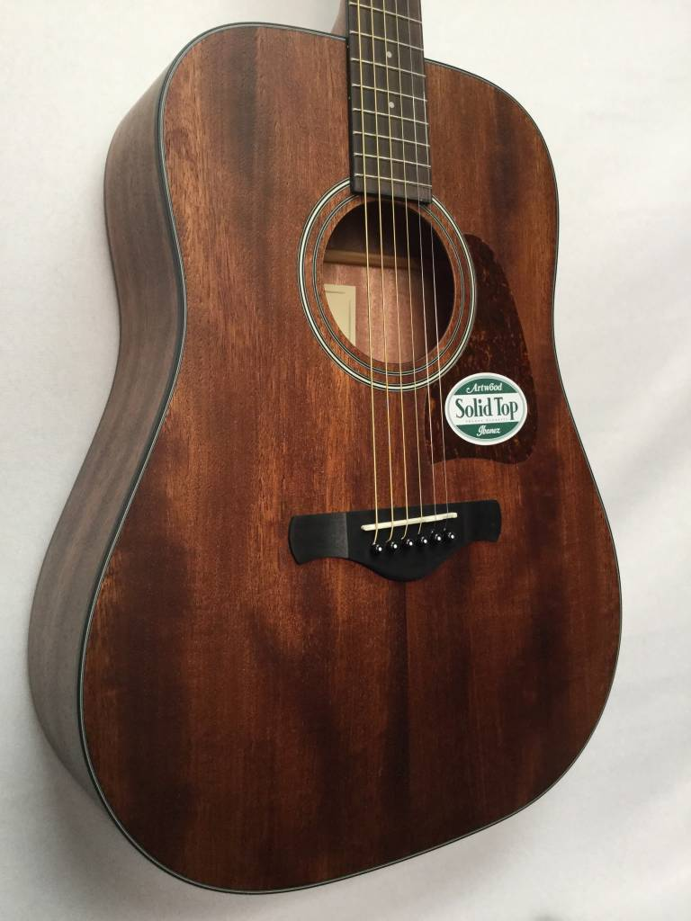 Ibanez Ibanez AW54 Open Pore Acoustic Guitar