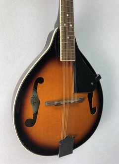 Fender Fender FM-100 Mandolin Pack