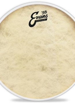 "Evans 22"" Calftone Bass Batter Head"