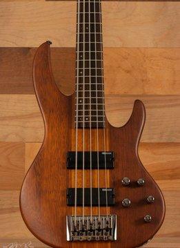 ESP ESP LTD D-5, Natural Satin