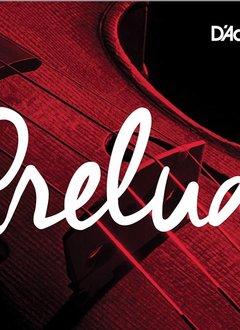 D'Addario Prelude Cello String Set, 3/4 Scale, Medium Tension