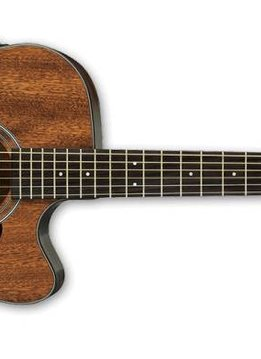 Ibanez Ibanez AW54CEOPN Acoustic/Electric