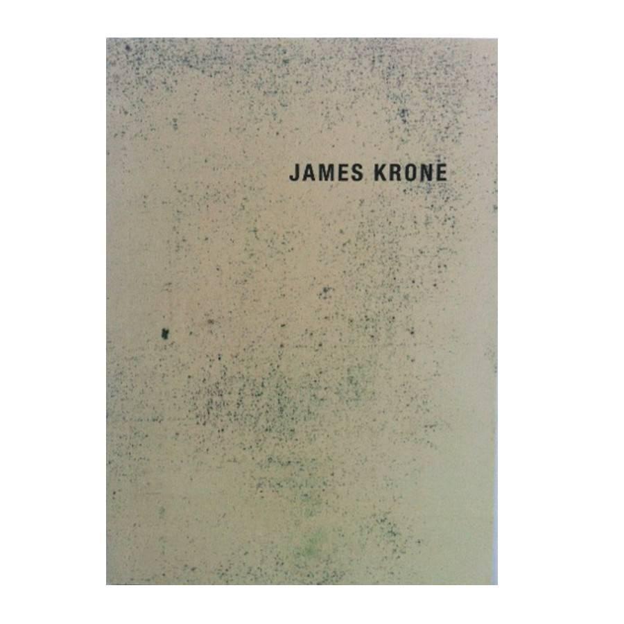 Kavi Gupta Gallery James Krone (2012)