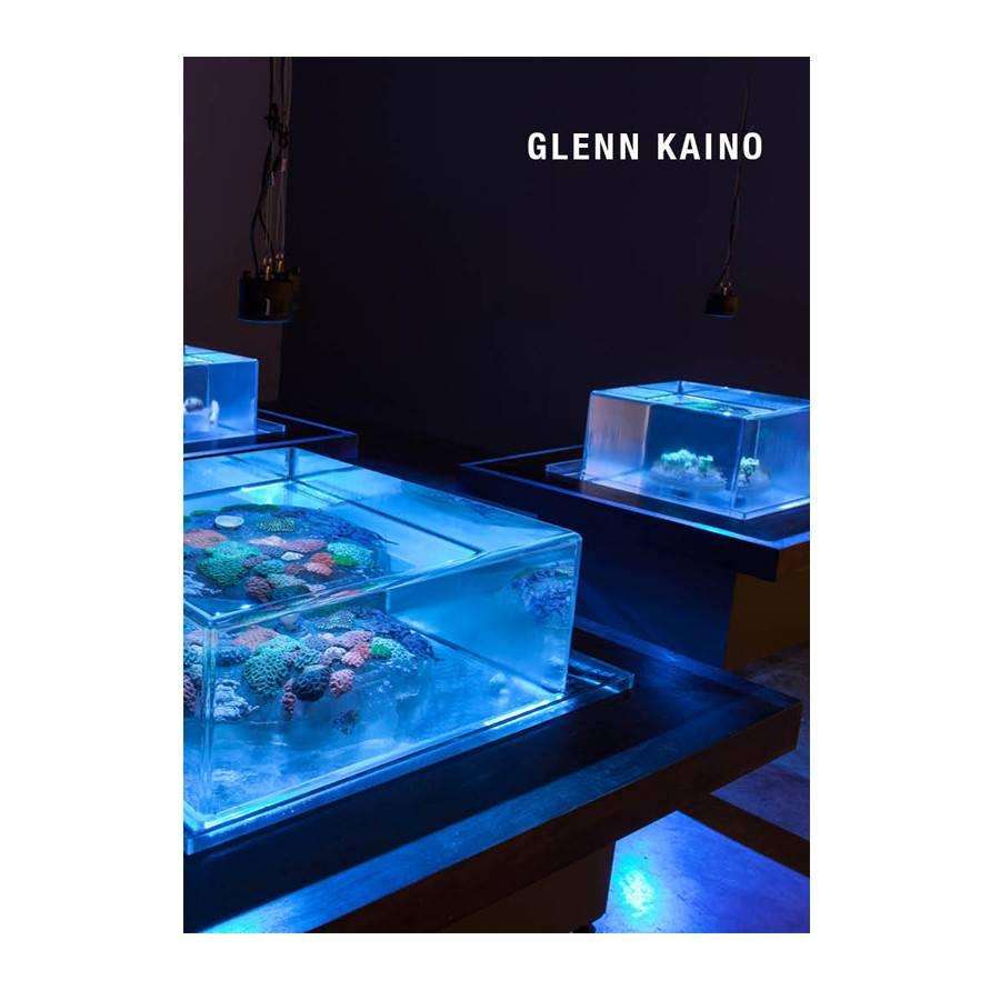 Glenn Kaino 2014