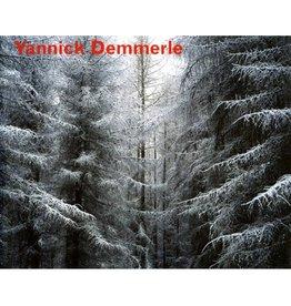 Arndt & Partner Yannick Demmerle by Yannick Demmerle; Pascal Neveux (preface); Peter Herbstreuth (essay)
