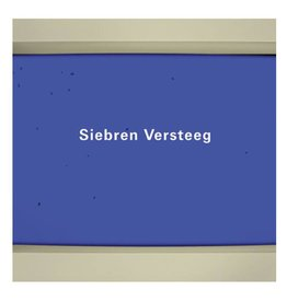 University Galleries of Illinois State University Siebren Versteeg - Essay by Maureen Sherlock and foreword by Barry Blinderman