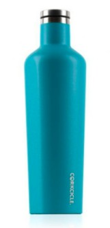 Corkcicle 16oz Canteen Waterman