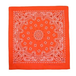 Liberty Mountain Neon Paisley Bandana