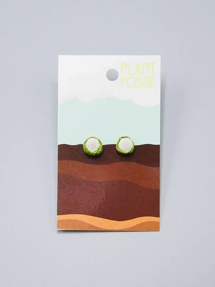 Plant Posse Cauliflower Post Earrings