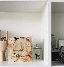 co/create 6x6 wood blocks - naughty by nature