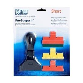Kent Kent Proscraper II Short
