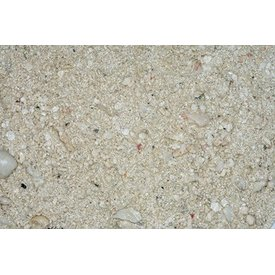 Carib sea CaribSea Ocean Direct Original Sand 20lb