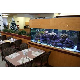 Aquarium Illusions Senior Dining Tank by Aquarium Illusions