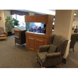 Aquarium Illusions Sitting Area Tank by Aquarium Illusions