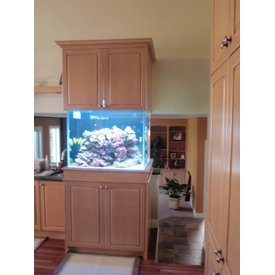 Aquarium Illusions Kitchen Conversation by Aquarium Illusions