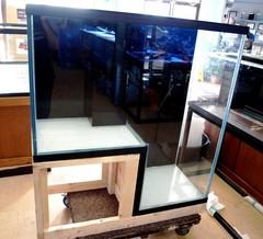 Aquarium Illusions