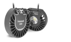 Products tagged with Kessil A80 tuna blue