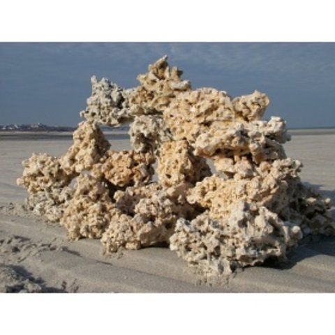 Marco Rocks Key Largo Premium per LB