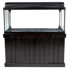 Products tagged with fish tank stand
