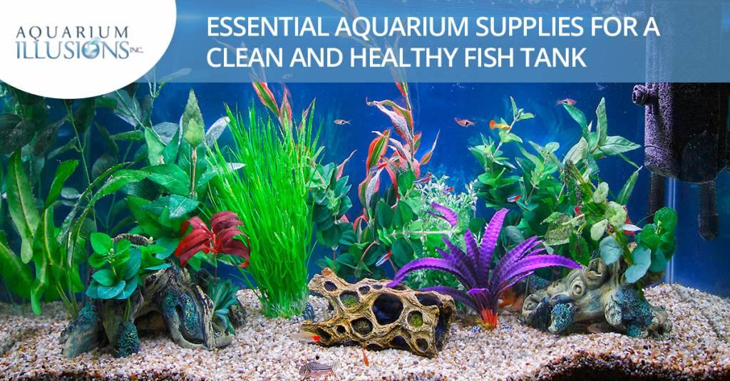 Essential Aquarium Supplies For A Clean And Healthy Fish Tank