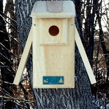 - COVESIDE OPEN 2 SIDE BLUEBIRD HOUSE