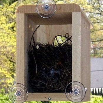 - COVESIDE WINDOW NEST BOX BIRD HOUSE