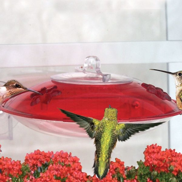 - DROLL YANKEES HUMMER-3 WINDOW FEEDER