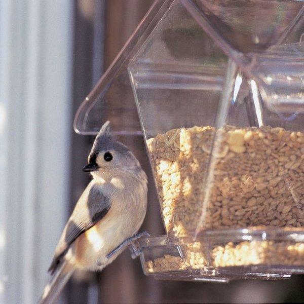 - ASPECTS WINDOW CAFE HOPPER FEEDER