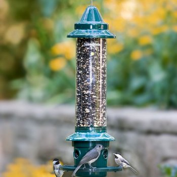 - BROME SQUIRREL BUSTER PLUS FEEDER