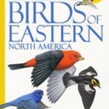 - NATIONAL GEOGRAPHIC FIELD GUIDE TO THE BIRDS OF EASTERN NORTH AMERICA