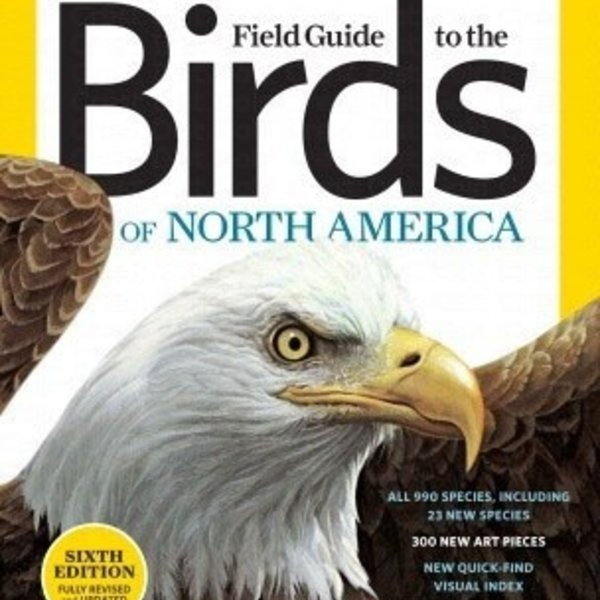- NATIONAL GEOGRAPHIC FIELD GUIDE TO BIRDS OF NORTH AMERICA 6TH ED.