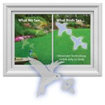 - WINDOW ALERT HUMMINGBIRD WINDOW DECAL 4 PK