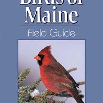 - BIRDS OF MAINE FIELD GUIDE
