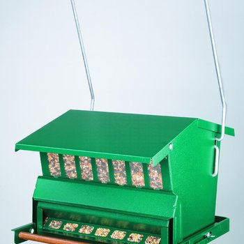 - ABSOLUTE SINGLE SIDE COMBO SQUIRREL PROOF FEEDER