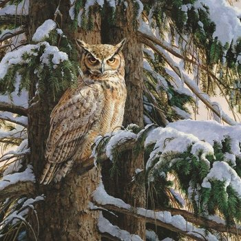- COBBLE HILL SNOWY PERCH OWL PUZZLE 1000PC
