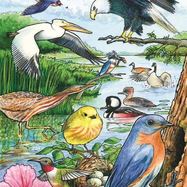 - COBBLE HILL NORTH AMERICAN BIRDS TRAY PUZZLE 35PC