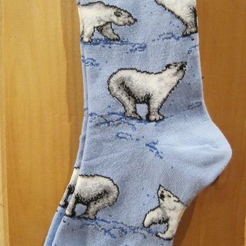 FOR BARE FEET SOCKS PLAYFUL POLAR BEAR ON BLUE MEDIUM