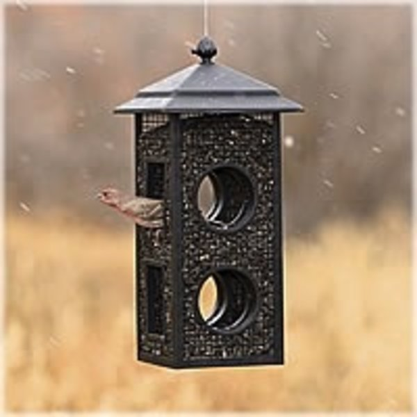 - PERKY PET FLY THROUGH WILD BIRD FEEDER