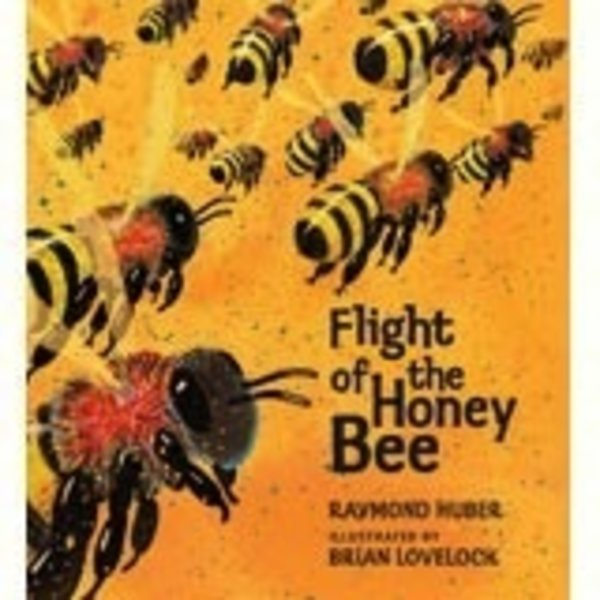 - FLIGHT OF THE HONEY BEE