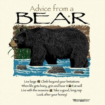 EARTH SUN MOON ADVICE FROM A BEAR TSHIRT