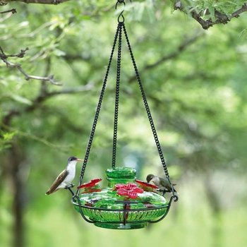 - PARASOL GREEN BLOOM PERCH HUM FEEDER