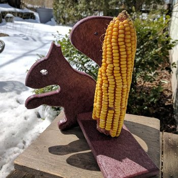 "- HILLTOP "" MR. SQUIRREL"" CORN COB FEEDER"