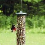 - BIRDS CHOICE MAGNET MESH PEANUT FEEDER