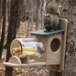 - BIRDS CHOICE RECYCLED SQUIRREL JAR FEEDER