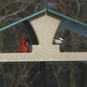 - BIRDS CHOICE RECYCLED DOUBLE DECKER HOPPER PLATFORM FEEEDER