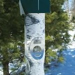 - VARI-CRAFTS BIRCH LOG MIXED SEED FEEDER