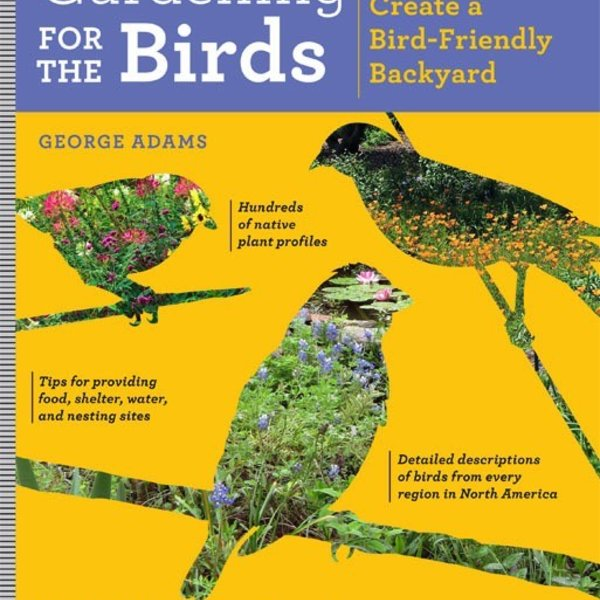 - Gardening for the Birds: How to Create a Bird-Friendly Backyard